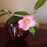 鎌倉の『やまご』で花かごを買ってきました 意外とお安い!