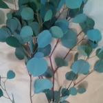 【フラワーアレンジメント】葉物(グリーン)の上手な使い方講座4【ユーカリ】