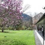 【箱根ラリック美術館】アールデコの美しい作品達、なかなか見応えありました!