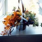 【ドライフラワー】秋を先取りできる素材!生花の少ないこの季節におすすめです