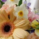 【フラワーアレンジメント】新春のお花の話