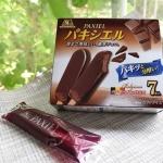 【パキシエル】ビターなチョコのアイスクリームが今年のお気に入り!