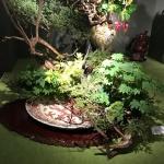 【小原流】支部創立記念花展を観てきました!とにかく豪華でした!