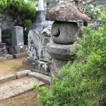 【カイズカイブキ】墓地の生垣の剪定をしてきました!