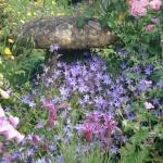 【第6回】英国イングリッシュガーデンの旅   個人のお庭を見学