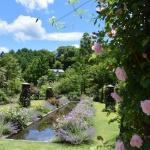 【軽井沢レイクガーデン】に行ってきました!①新緑の中にバラが咲き始めていました