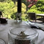 【ジリーノ】新緑のお庭を眺めながらランチしました!