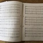 【練習用楽譜】綴じるのにコクヨのファスナーファイルが使いやすい!