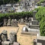 夏前のお墓掃除と除草剤