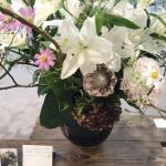【水彩画教室作品展】リリス期終了し花装飾撤収してきました。全期の花の変化の様子。