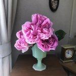 薔薇の季節になりました!美しさと香りに癒されます!