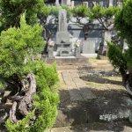 【秋彼岸】本堂建て替えで見納めのお墓参りしました